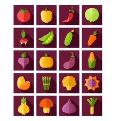 Vegetable Flat Icon with Long Shadow vector image vector image