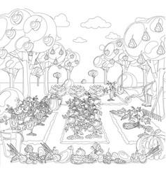 vintage garden banner with root veggies coloring vector image