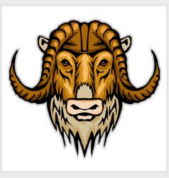 buffalo head emblem isolated on white background vector image