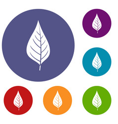Apple tree leaf icons set vector