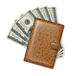 Brown leather wallet with dollars on white vector