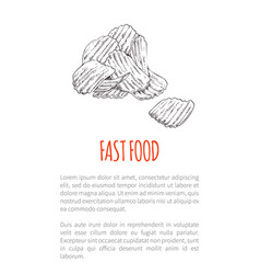 Fast food fried potato poster vector
