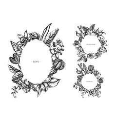 floral frames with black and white ficus iresine vector image