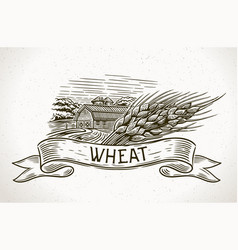 Graphical image a farm with a sheaf wheat vector