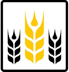 isolated wheat and darnel symbol vector image