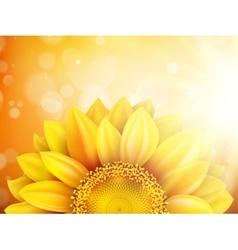 Macro SunFlower Background EPS 10 vector image