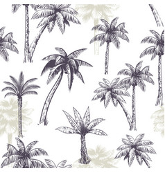 palm tree seamless pattern beautiful island vector image