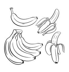 Set outline bananas vector