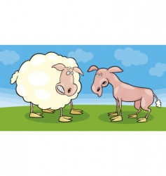 frightened sheep and shaved one vector image