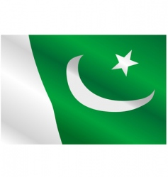flag of Pakistan vector image vector image