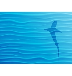 Shark silhouette in blue water vector image