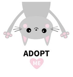 adopt me dont buy gray cat hanging upsidedown vector image