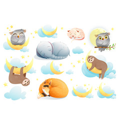 baanimals cartoon collection funny cute vector image