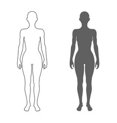 Female body silhouette and contour isolated women vector