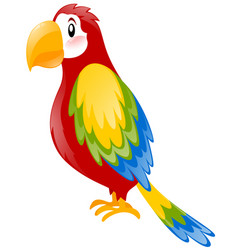 Parrot with colorful feather vector
