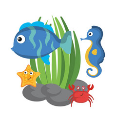 sea life design vector image