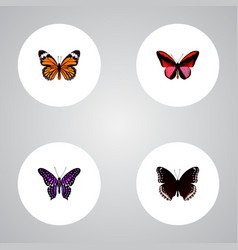 set of moth realistic symbols with hypolimnas vector image