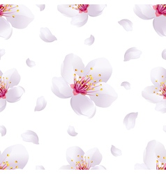 Spring background seamless pattern with sakura vector image