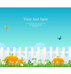 fence with grass pumpkin vector image