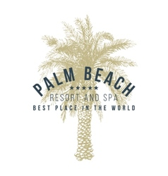 Palm beach logo template vector