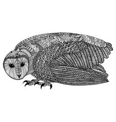 The barn owl vector
