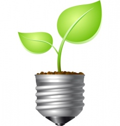 leaf in bulb vector image vector image