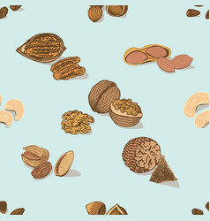 colorful nuts and seeds seamless pattern vector image vector image