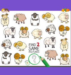 Find two same sheep characters game for kids vector
