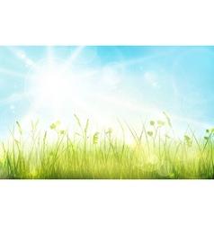 1701001 Green blue gras sky sun spring bokeh vector image