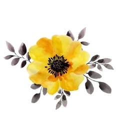 Watercolor of yellow flower isolated vector