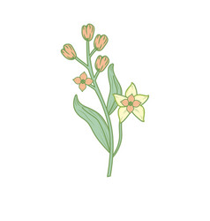 Silhouette chamomile plant ingredient to condiment vector