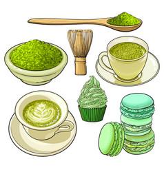 Big set of matcha green tea food and accessories vector