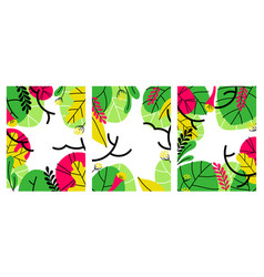 foliage backgrounds with tropical leaves set vector image