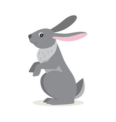 icon gray hare isolated forest woodland vector image
