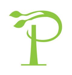 p letter floral logo design vector image