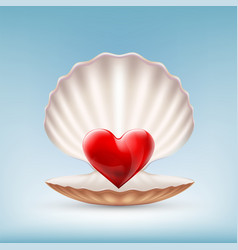 Red heart in a seashell icon vector