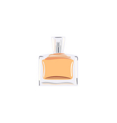 square bottle with orange liquid vial for perfume vector image