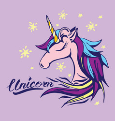 Unicorn text and character in vector