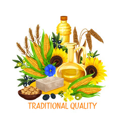 vegetable seed and nut cooking salad oils vector image