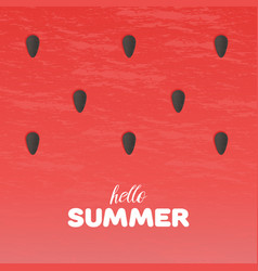 Watermelon texture background with hello summer vector