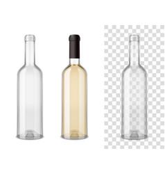 wine blass bottles set vector image