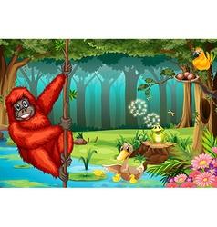Orangutan in jungle vector