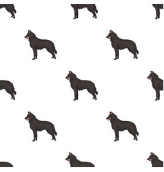 the dark belgian wolf belgium single icon in vector image vector image
