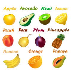 A set of fruits with names on a white background vector