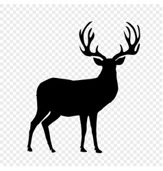 black silhouette of reindeer with big horns on vector image
