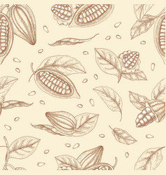 botanical seamless pattern with pods or fruits of vector image