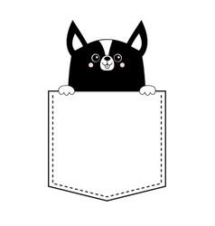corgi dog happy face head icon in pocket vector image