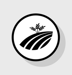 wheat field sign flat black icon in white vector image vector image