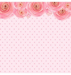 Pink Rose Background vector image vector image