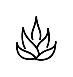 Agave plant icon outline vector